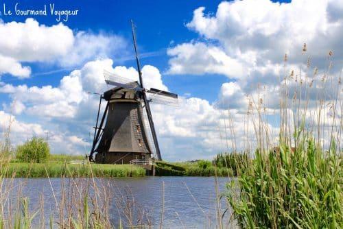 Les moulins de Kinderdijk, une carte postale des Pays-Bas