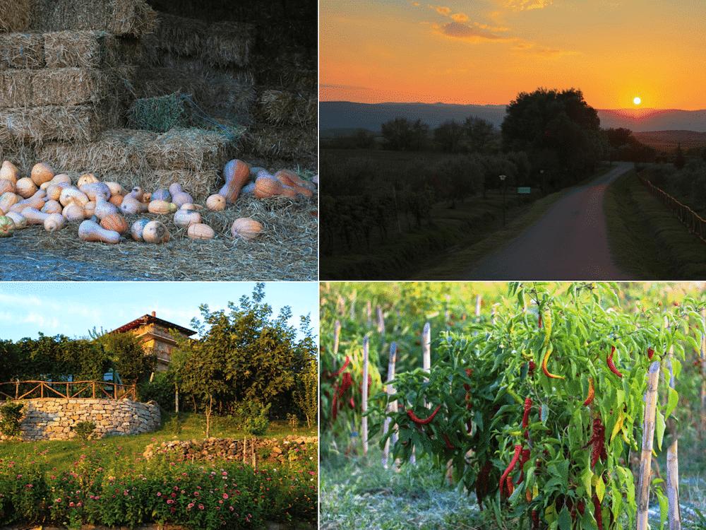 albanie-le-gourmand-voyageur-decran-2016-11-21-a-22-40-30-min